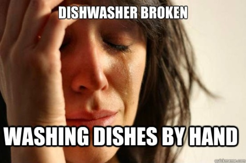 Can I Wash My Running Shoes In The Dishwasher